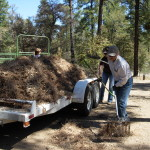 2015 Groom Creel Horse Camp Cleanup